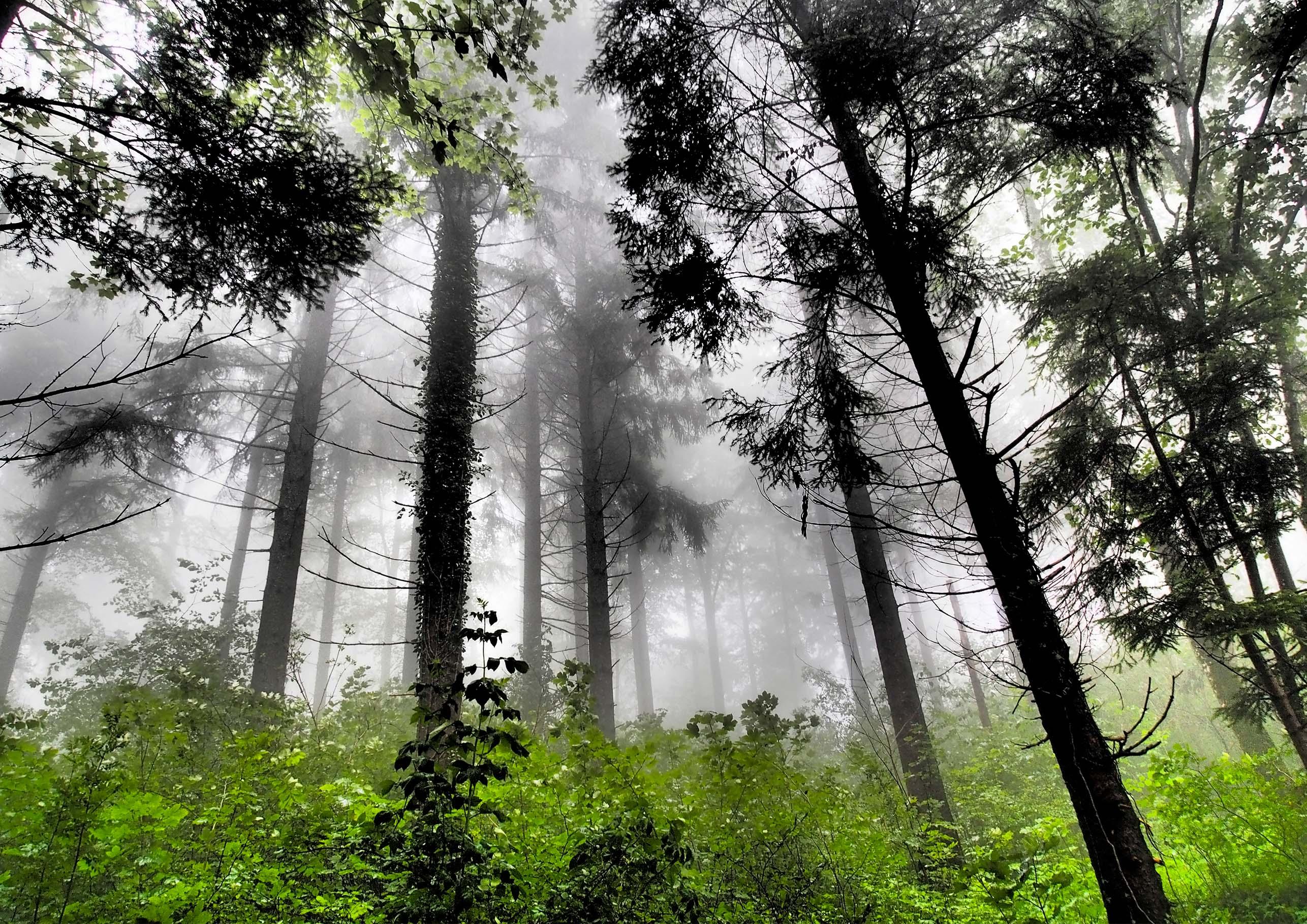 Eiffage innova para la transición ecológica